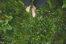 Female Standing Barefoot On Gr...