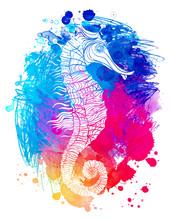 Rainbow Seahorse, Decorative G...