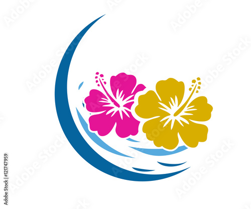 Obraz na plátně Hawaii Flower