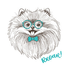 Vector Sketch Illustration Of A Cute Little Pomeranian With Bow And Round Glasses. Fashionable Dog Print.