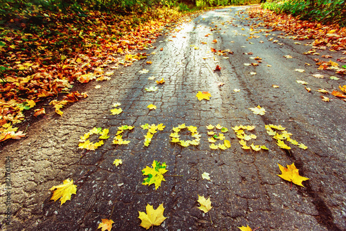 Obraz Word October written with autumn yellow maple leafs at road - fototapety do salonu