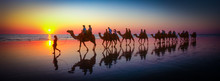 Broome, Camel Reflections