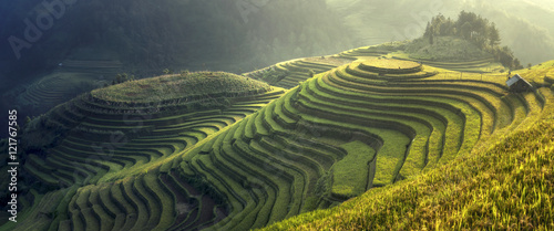 Garden Poster Rice fields Beautiful rice terraces Mu cang chai,Yenbai,Vietnam.The symbol