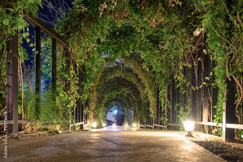 Foto Tunnel arch pathway garden illuminate lighting