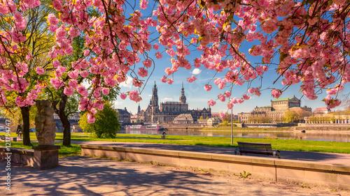 Dresden Frühling - 121794747
