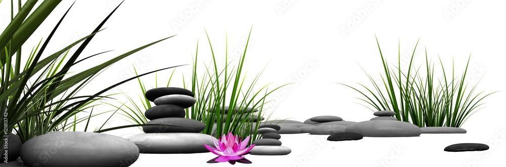 Fototapeta Trawa i kamienie z różową lilią wodną