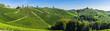 canvas print picture - Weinberge in der Steiermark unter blauem Himmel