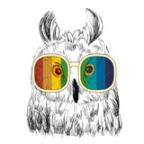 Vector sketch of owls with glasses. Retro illustration - 121833981