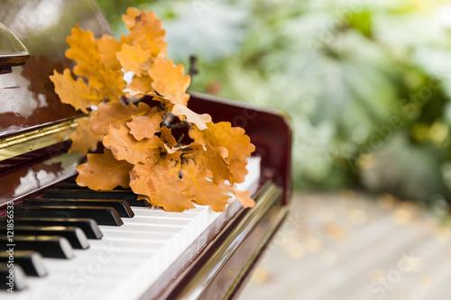 Zdjęcie XXL Zbliżenie na klawiszach fortepianu z liśćmi dębu na nich. Koncepcja muzyki. Jesień