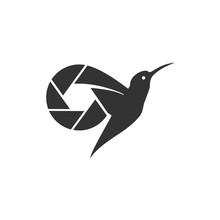 Hummingbird Photography Logo Design
