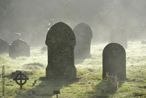 Photo Misty graves
