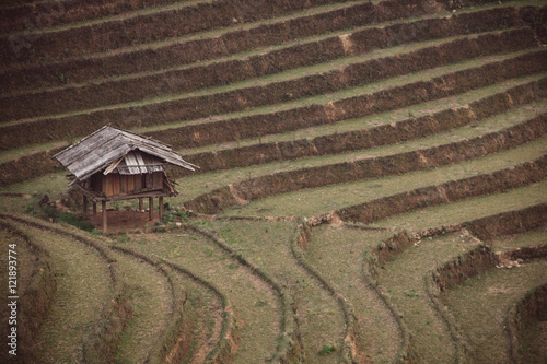 In de dag Rijstvelden Rice fields on terraced of Mu Cang Chai, YenBai, Vietnam. Rice fields prepare the harvest at Northwest Vietnam.