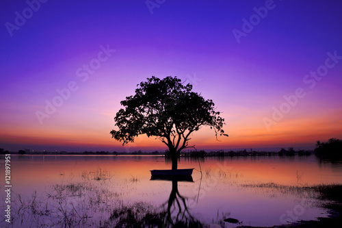 Spoed Foto op Canvas Violet Silhouette twilight sunset sky with tree in water reflect landscape