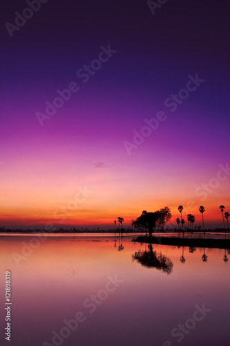 Spoed Foto op Canvas Violet Silhouette twilight sunset sky reflect on the water with palm tree landscape