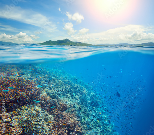 Poster Coral reefs Large coral reef in tropical sea background of island