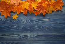 Autumn Background With Colour Leaves On Blue Boards