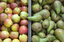 Stack Of Green Pears Next To P...