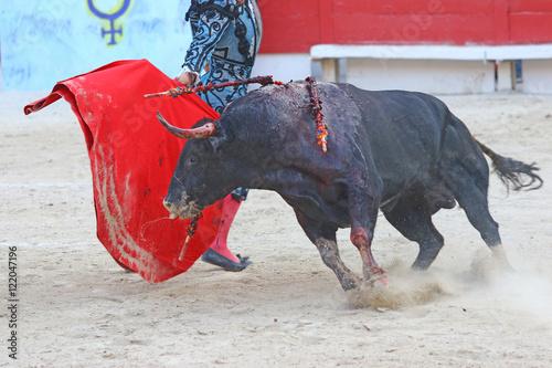 Fotobehang Stierenvechten Corrida