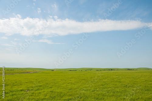 Cuadros en Lienzo Wide open rural prairie landscape in summer