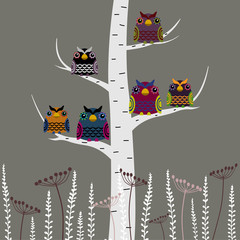 FototapetaVector set of a colorful owls in the night, at the birch tree