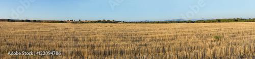 Valokuva  Panorama de Paisaje Agricola llano  con Horizonte de bosques y Montañas