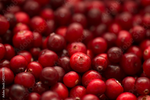 Fotografia  Cranberry, wild berry, background and texture