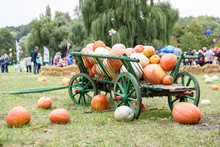 Big Pile Of Pumpkins On Hay In A Wooden Cart The Season Of Harvest On The Farm Thanksgiving At A Festival In Moldova