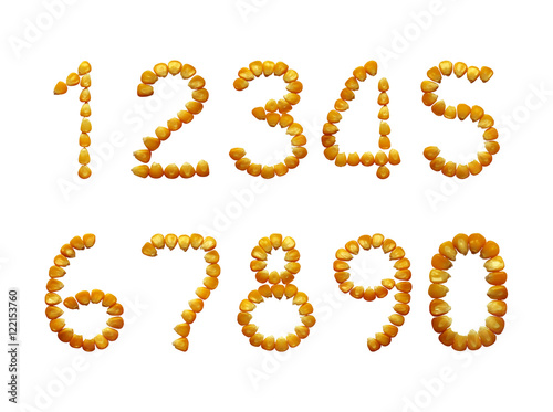 Luky numbers ripe corn isolated, the pattern of corn grains. плакат