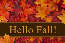 Hello Fall Message