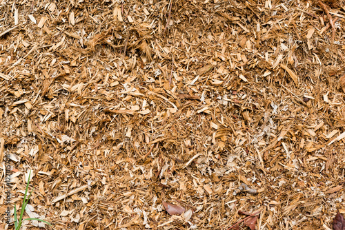 Fotografia, Obraz  Full frame view of wood chip mulch