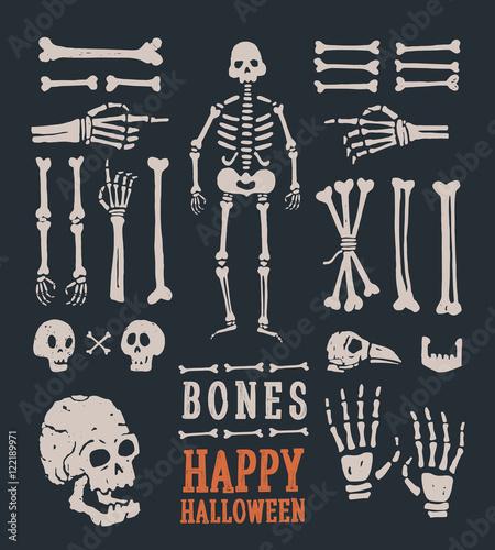 Halloween. Set of cartoon skulls and bones. Vector illustration. Wallpaper Mural