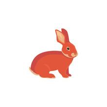 Vector Illustration Of Cartoon Rabbit. Drawing Vector Rabbit