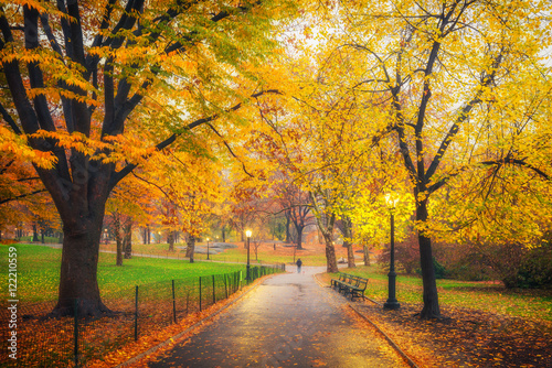 Canvas Prints Autumn Central park at foggy morning, New York City, USA