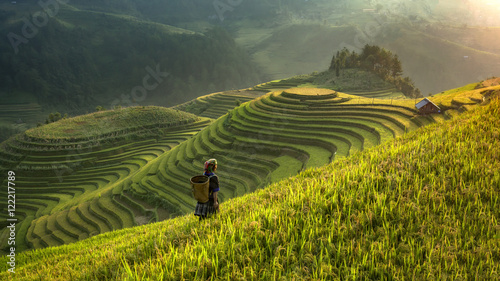 Fotografie, Obraz  Smooth symbolize the city's Mu cang chai,Yenbai,Vietnam.
