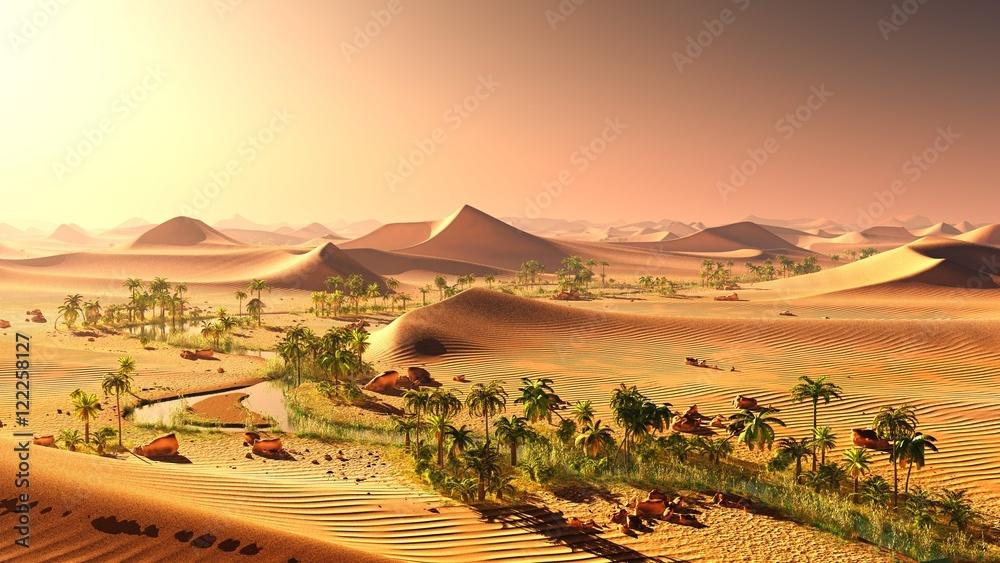 oasis 12