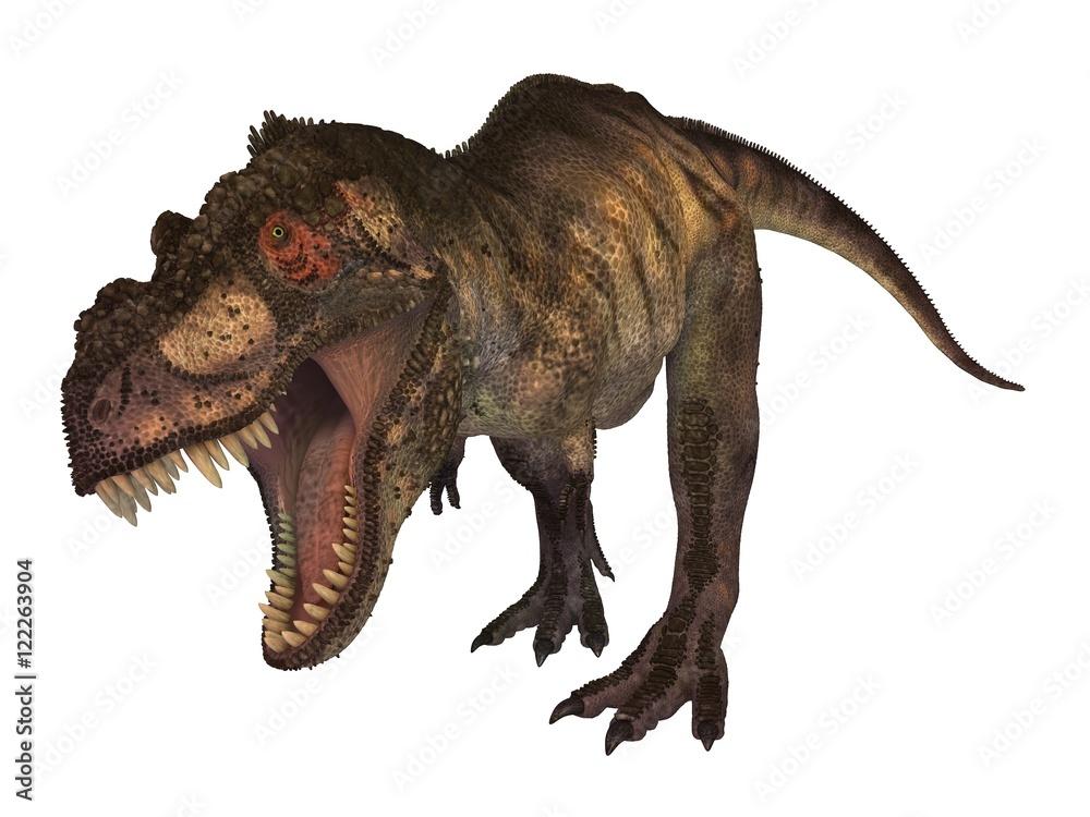 Photo  Tyrannosaur