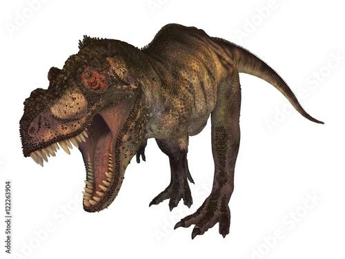 Fotografie, Obraz Tyrannosaur
