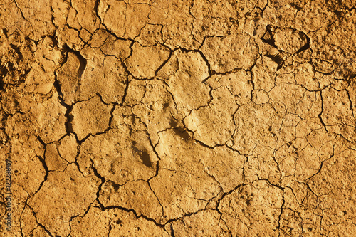 Cracked earth during a drought