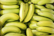 Close Up Of A Box Full Of Bananas At The Tshwane Fresh Produce Market, Pretoria, Gautang, South Africa