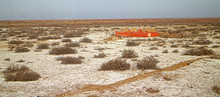 Clay Desert Covered With Baril...
