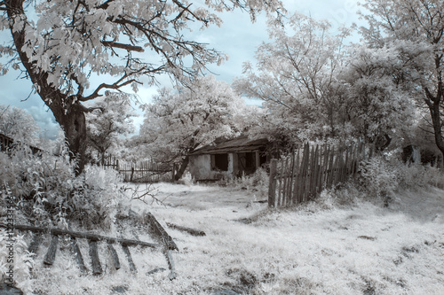 Canvastavla Infrared landscape and details