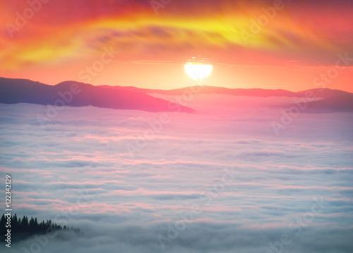 Poster Corail misty sea Carpathians
