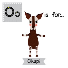 O Letter Tracing. Okapi Standing On Two Legs. Cute Children Zoo Alphabet Flash Card. Funny Cartoon Animal. Kids Abc Education. Learning English Vocabulary. Vector Illustration.