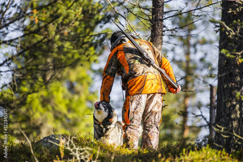 Fotobehang Jacht Swedish Moosehound in the fall hunting season