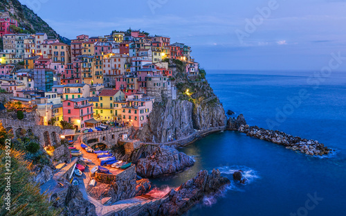 Aluminium Prints Europa Night beautiful Manarola - one of the towns in the Cinque Terre (Liguria, Italy)
