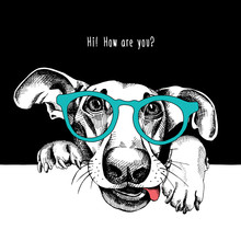 Portrait Of A Funny Dog In Glasses. Vector Illustration.