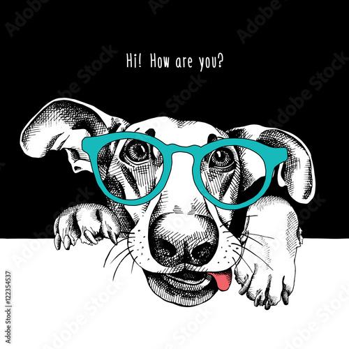 Plakat na zamówienie Portret śmiesznego psa w niebieskich okularach