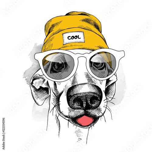 portret-pies-w-zoltym-hipster-kapeluszu