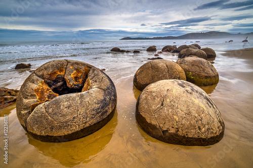 Fotografia Cracked Moeraki boulder at the beach