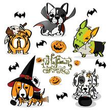 Halloween Little Dog Little Devil
